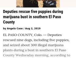 7-18-19 Colorado Pueblo 0-1
