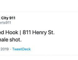 8-17-19 New York Brooklyn 1-0